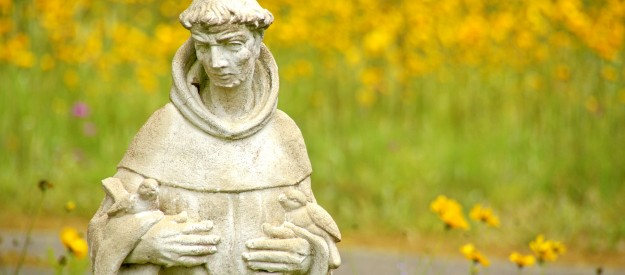 At A Franciscan Transitus Ceremony At My Parish This Evening, It Struck Me  That St. Francisu2014the Patron Of Ecology And Animals, As Well As People Who  Promote ...
